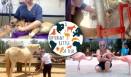 D23 Aruba Lucy Heaton-1